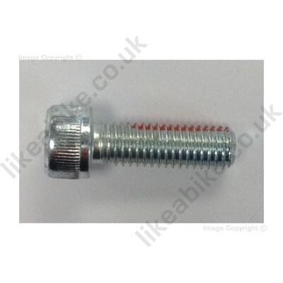 LIKEaBIKE Jumper Swingarm Adjuster Bolt click to zoom image